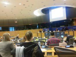 Anhörung zur Situation der Beduinen im Nahen Osten