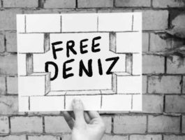 Abgeordnete unterstützen #FreeDeniz